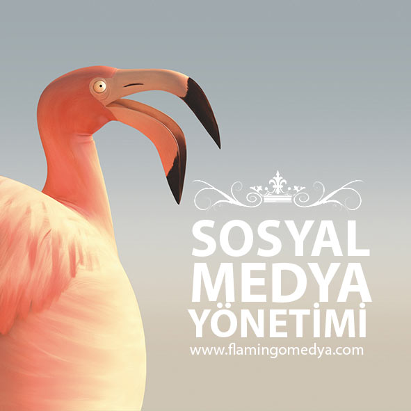 SOSYAL-MEDYA-YÖNETİMİ